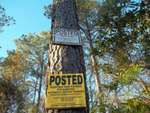 In Highway Patrol lingo, Creek Pointe Road is a PVA – short for 'public vehicle access.' The unpaved road is essentially an easement over timber and hunting lands, which doubles as a long driveway that serves waterfront homes almost eight miles south of Lee Landing Road in western Pamlico County.