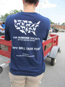 NEWS1-Puppy-Mill-pic-1