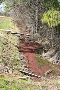 Raw Swine Waste Discharged to NC Stream