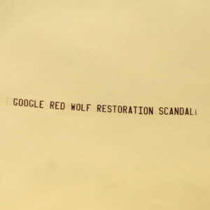 NEWS1-Red-Wolf-banner-pic