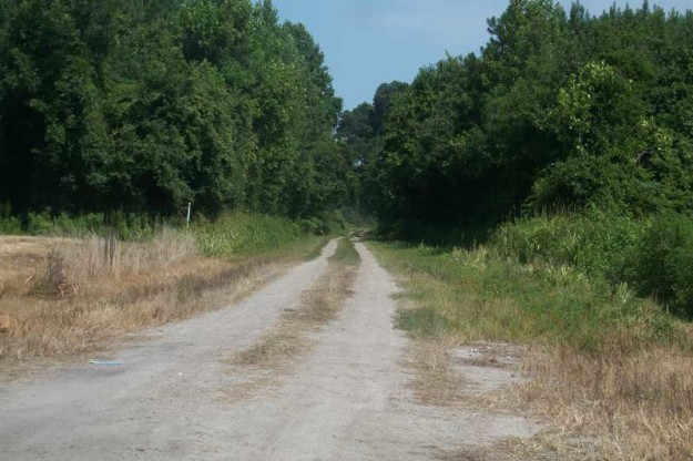 """Can there possibly be anything at the end of this road? Yes! Investigators discovered Miller's meth lab, which was """"still in the manufacturing process,"""" reported Pamlico County Sheriff Chris Davis."""