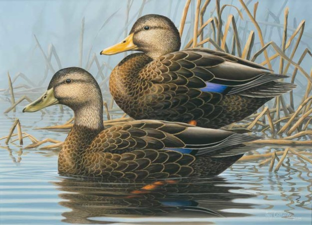 Last year's winning artwork came from Guy Crittenden, a Virginia wildlife artist.