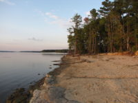 Jordon Lake (file photo)