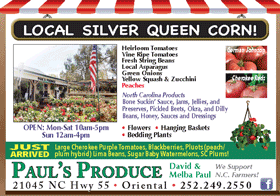 07-02-2020-Pauls-Produce-8th-Hor-Color
