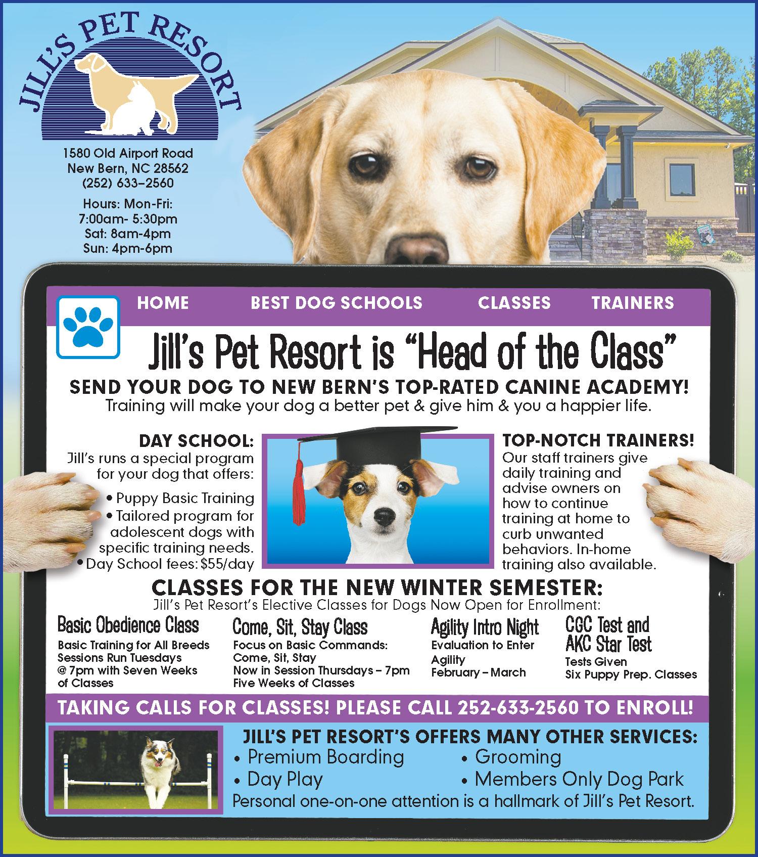 01-07-2021 Jill's Pet Resort Full Color Taberna